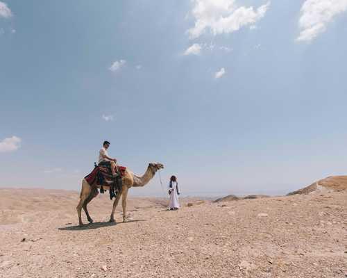 Arab desert