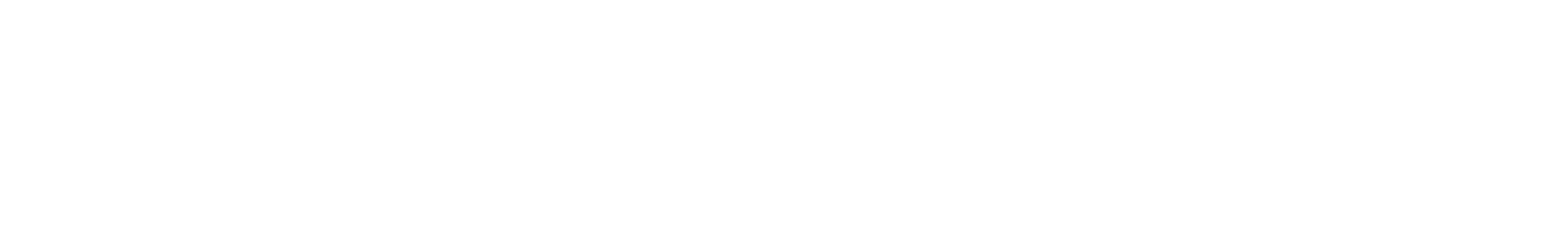 sof 106 d basses