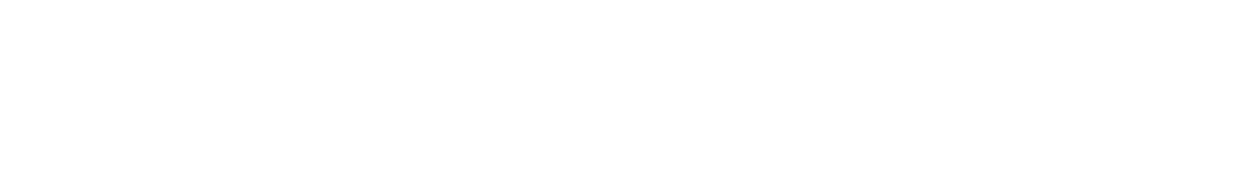 pth bass 13