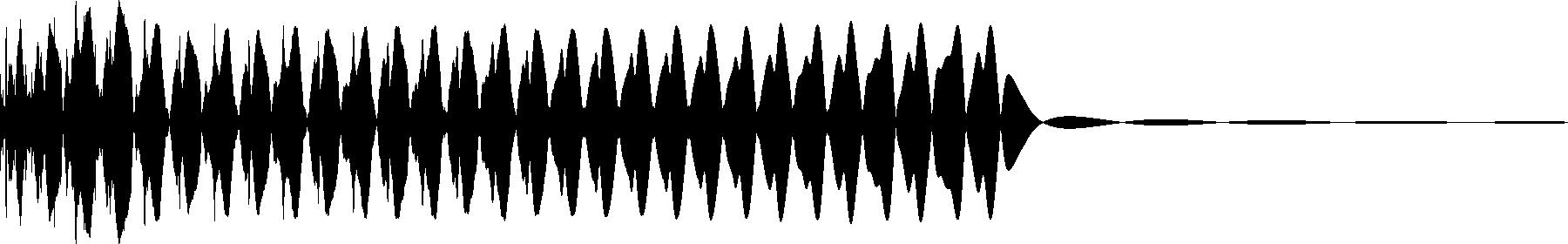 shortbass 02