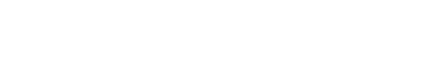 snare 19