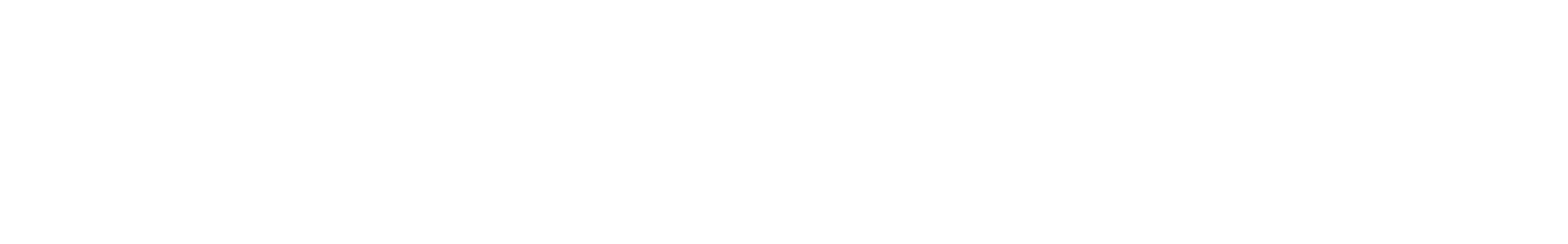 snare 07