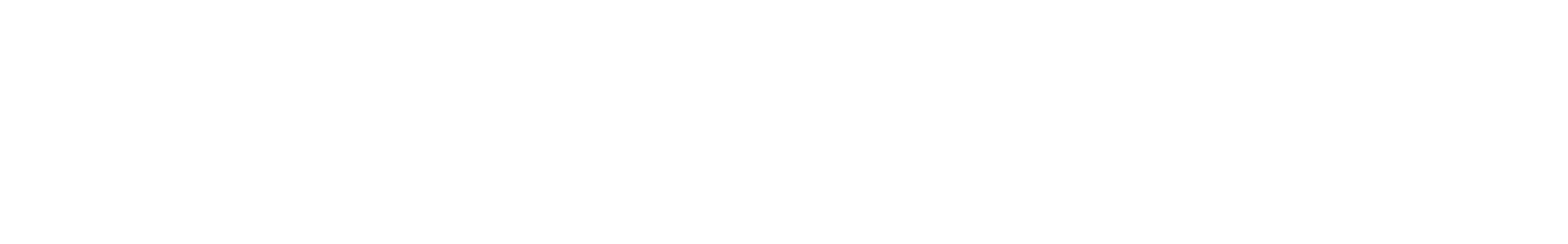 ps480 vb