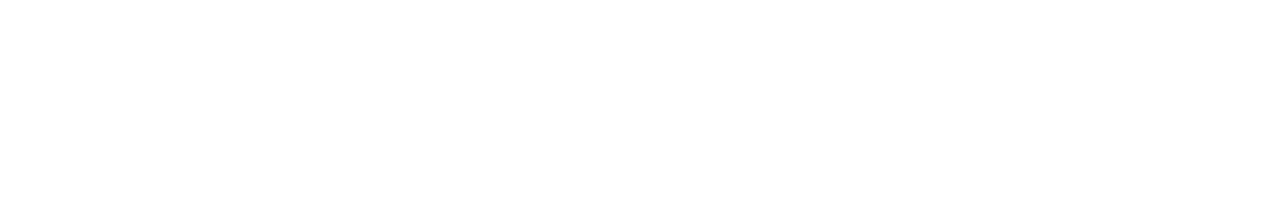 ct2 120 fm mono synth roger