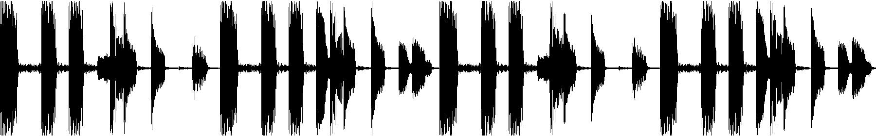 s.w.b. bassloop   11
