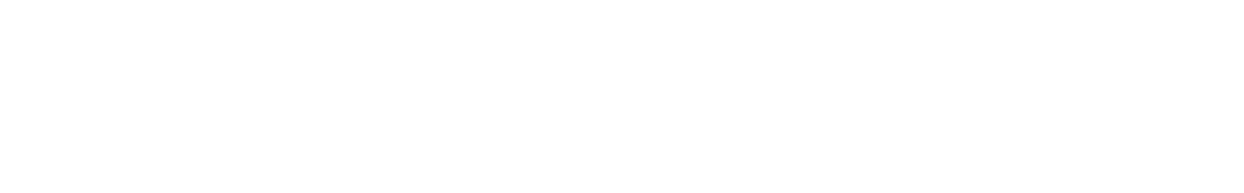 808  spinz