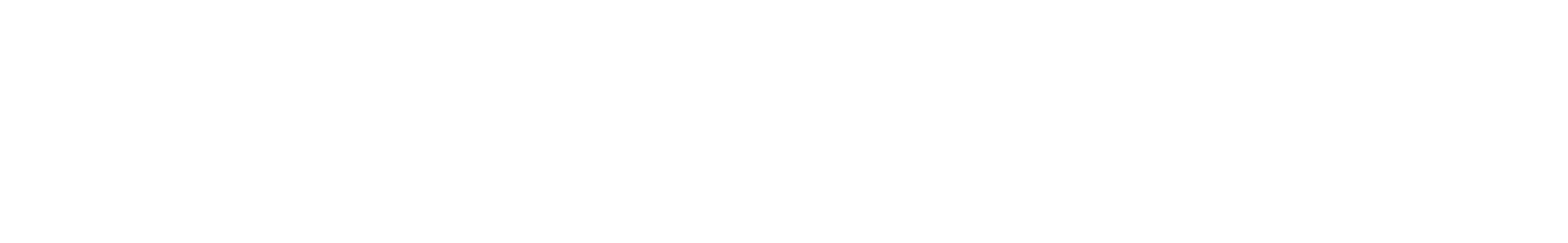 zap system 2