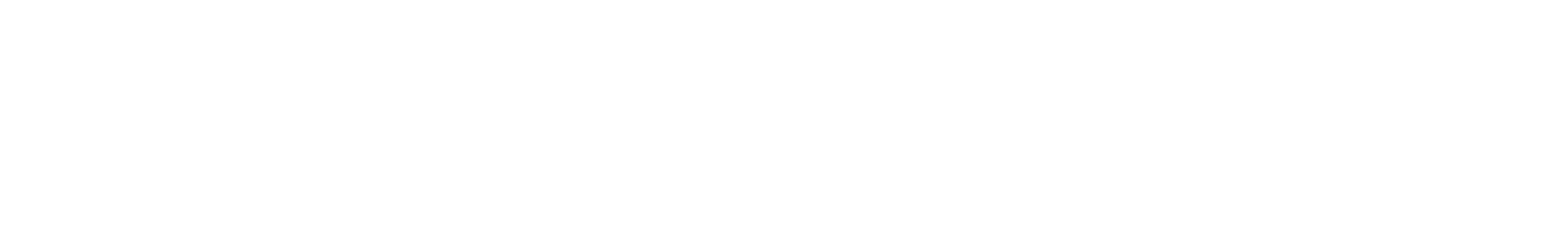 ehp 303loop 127 borgtb f