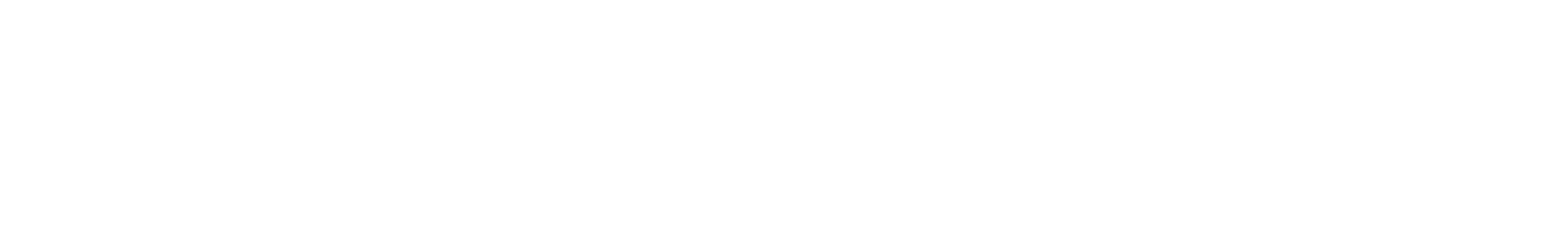 102 electrobass a