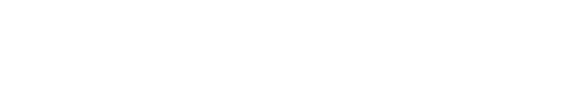 snare 11