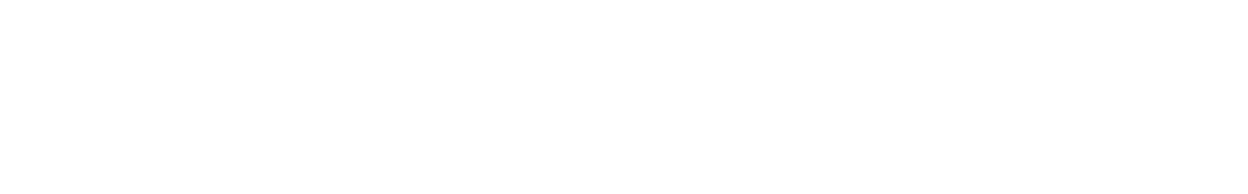 snare 13