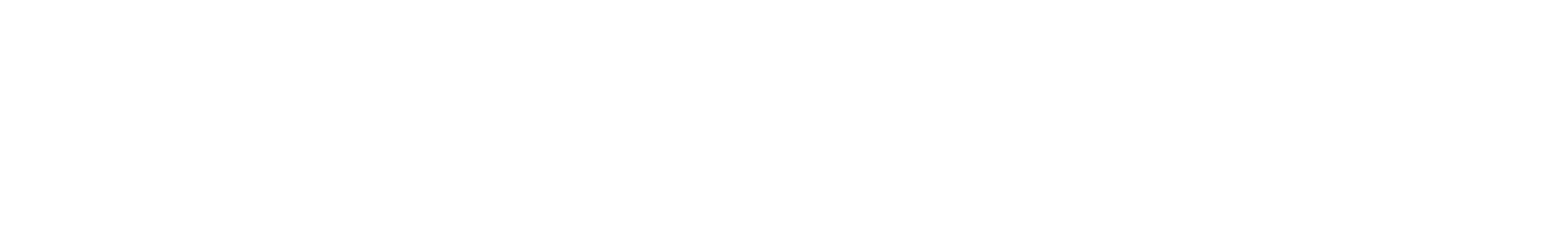 snare 29