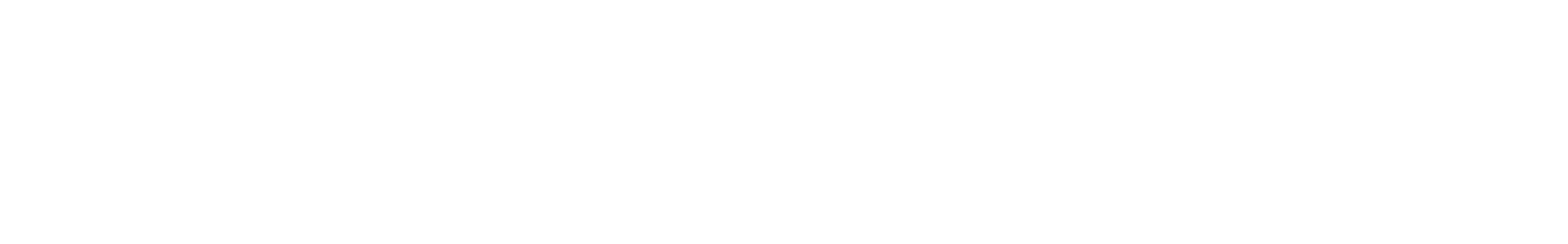 syn1 80