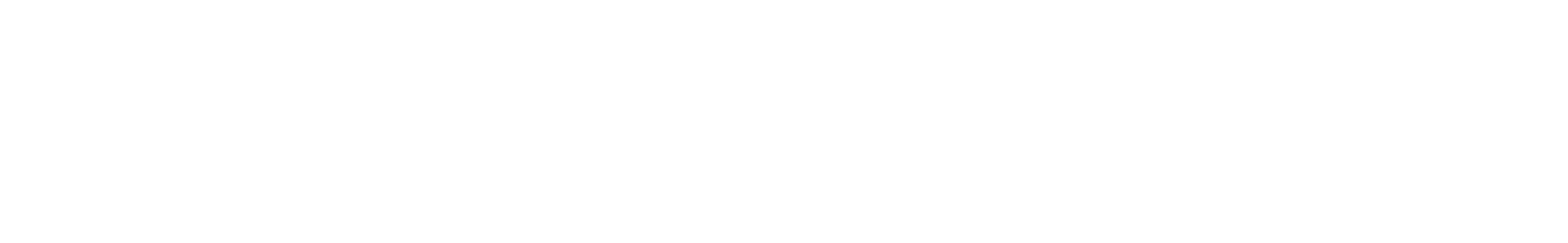 fx 010