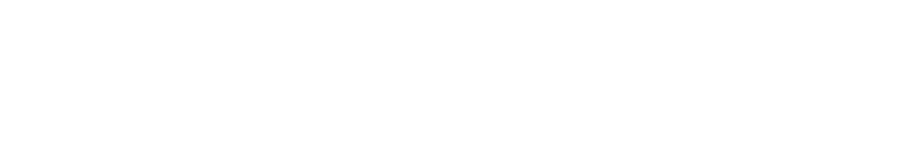 06 bongos b